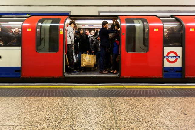 Why is the Northern Line suspended and what is its current status?