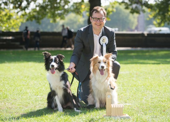EDITORIAL USE ONLY Boomer (right) and Corona, belonging to Alex Norris MP are announced as winners of the 26th Westminster Dog of the Year competition organised jointly by Dogs Trust and The Kennel Club at Victoria Tower Gardens, Westminster.