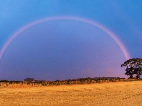 Photographer captures pink rainbow during 'rare weather phenomenon'