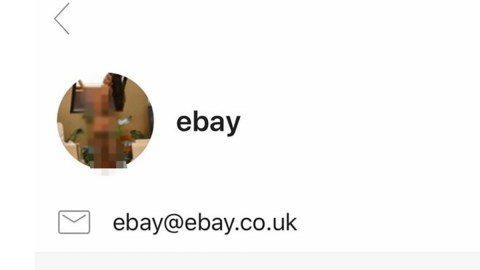 Ebay Investigating Hack That Swapped Email Icon For Topless Woman Metro News