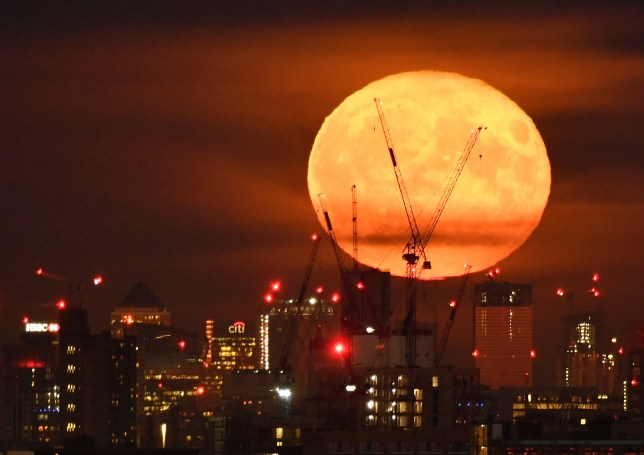 Celebrate international 'Observe the Moon Night' this evening with a glance upwards