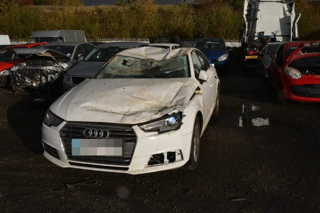 Heavily pregnant woman loses baby after falling tree crushes Audi