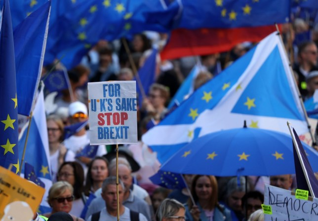 Protestors during the March to Remain in the EU for Peace and Climate Action in Edinburgh. PA Photo. Picture date: Saturday September 21, 2019. See PA story POLITICS Scotland Remain. Photo credit should read: Andrew Milligan/PA Wire