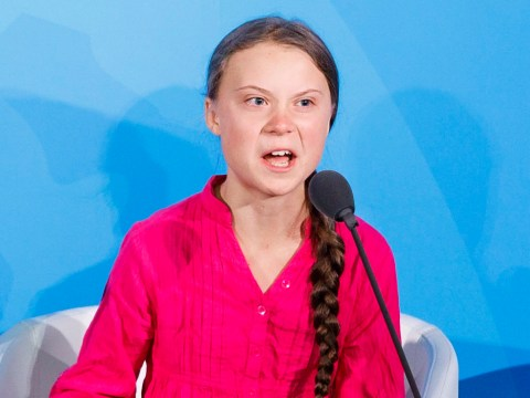'The Greta Thunberg helpline' launched to help 'adults angry at a child'