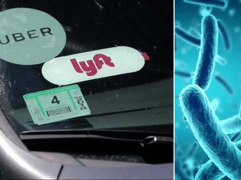 Rideshare cabs like Uber have 35,000 times more germs than the average toilet seat