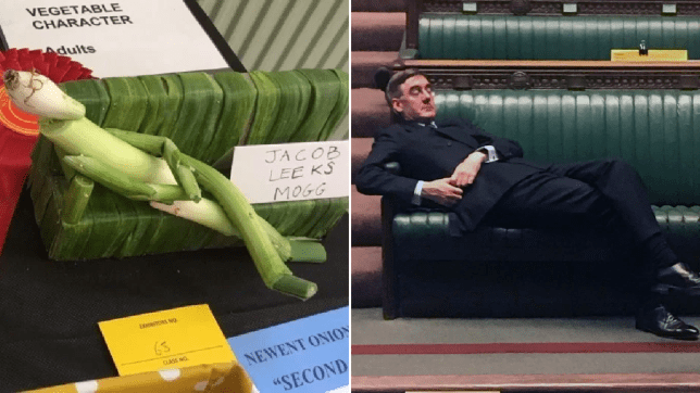 Jacob Leeks Mogg