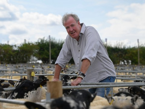 Jeremy Clarkson takes millennial approach to herding up his sheep as he doesn't have a dog