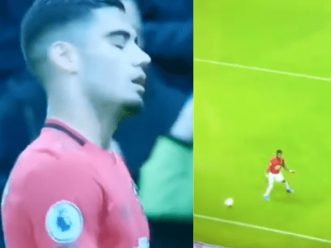 Andreas Pereira cannot hide frustration with Manchester United team-mate Fred during Newcastle clash