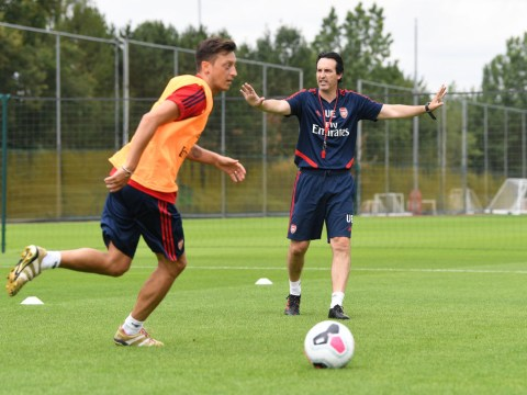 Mesut Ozil admits he does not see 'eye-to-eye' with Arsenal manager Unai Emery
