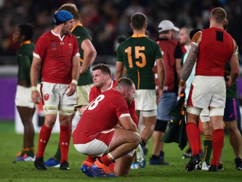 South Africa shatter Wales dreams to set up Rugby World Cup final against England