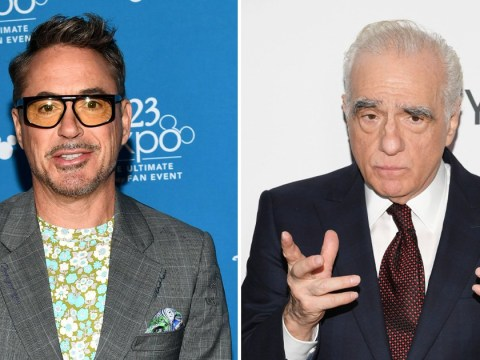 Robert Downey Jr doesn't think Martin Scorsese's comments on Marvel movies make any sense