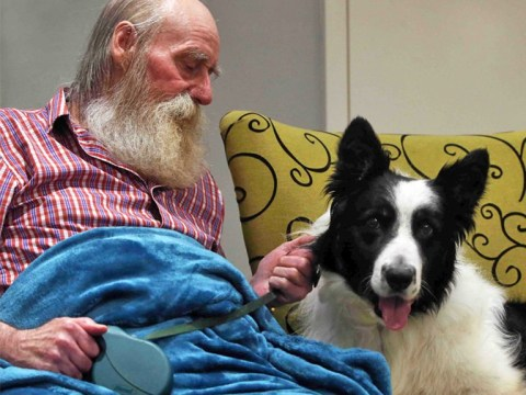 Pensioner who had to have leg amputated is 'new man' after reunion with dog