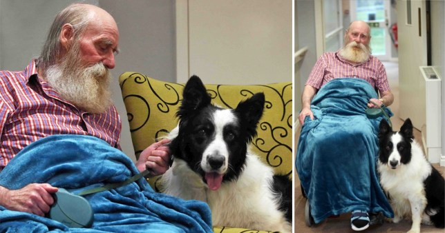 David Robson was devastated after being separated from his dog Harry during a long hospital stint