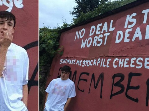 Teenager gets apology after council paints over his 'fromage not Farage' sign