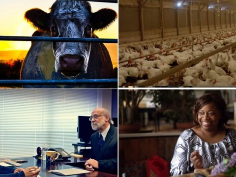 All the best vegan documentaries to stream as The Game Changers launches on Netflix UK