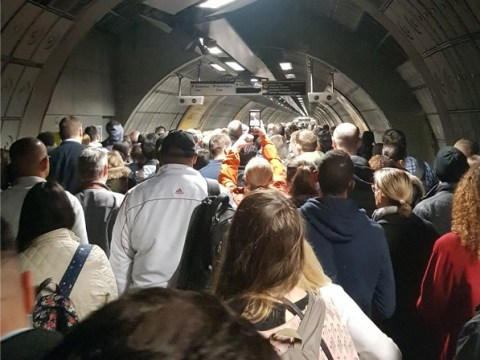 London travel chaos as Jubilee line part suspended