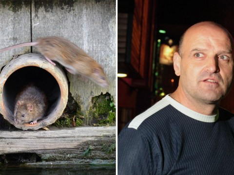 Councillor says Liverpool's rat problem could be solved by shooting them all