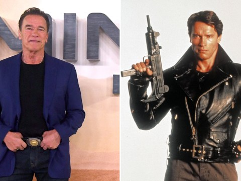 Arnold Schwarzenegger reveals the Terminator has an unexpected day job in new Dark Fate film