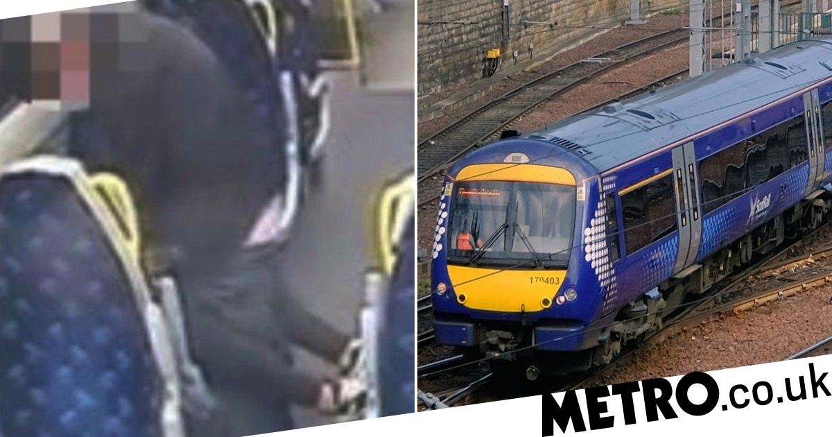 Police hunt for couple who kept having sex on train