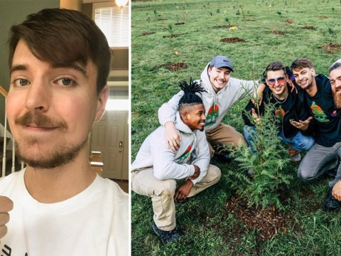 YouTube star MrBeast pledges to plant 20 million trees by 2020 but he needs your help