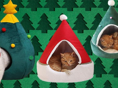 Amazon is selling Christmas tree beds for your beloved cat