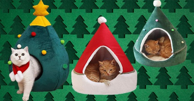 Three of the different Christmas-themed beds
