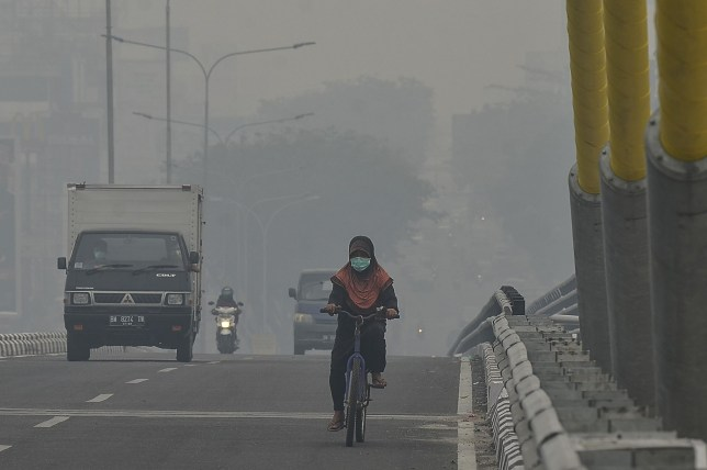 A cyclist makes her way cross a bridge amid choking smog due to forest fires in Pekanbaru, Riau on September 19, 2019. - Malaysia said September 19 it will raise pressure on its Southeast Asian neighbours to find a solution to recurring outbreaks of smog-belching forest fires in Indonesia, as air quality plummeted and more schools closed. (Photo by Wahyudi / AFP)WAHYUDI/AFP/Getty Images