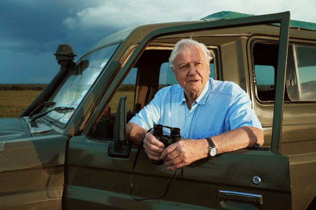 For use in UK, Ireland or Benelux countries only Undated BBC handout photo of Sir David Attenborough, who will return to present a new wildlife series on BBC One, Seven Worlds, One Planet, which will premiere later in the month. PA Photo. Issue date: Wednesday September 4, 2019. 77,527 people applied for tickets to a public preview - only 300 will be successful. See PA story SHOWBIZ Attenborough. Photo credit should read: Alex Board/BBC/PA Wire NOTE TO EDITORS: Not for use more than 21 days after issue. You may use this picture without charge only for the purpose of publicising or reporting on current BBC programming, personnel or other BBC output or activity within 21 days of issue. Any use after that time MUST be cleared through BBC Picture Publicity. Please credit the image to the BBC and any named photographer or independent programme maker, as described in the caption.