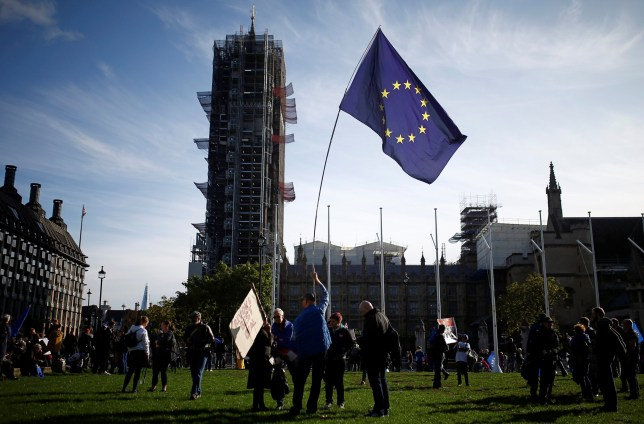 Protesters demonstrate outside Westminster as parliament sits on a Saturday for the first time since the 1982 Falklands War, to discuss Brexit in London, Britain, October 19, 2019. REUTERS/Henry Nicholls