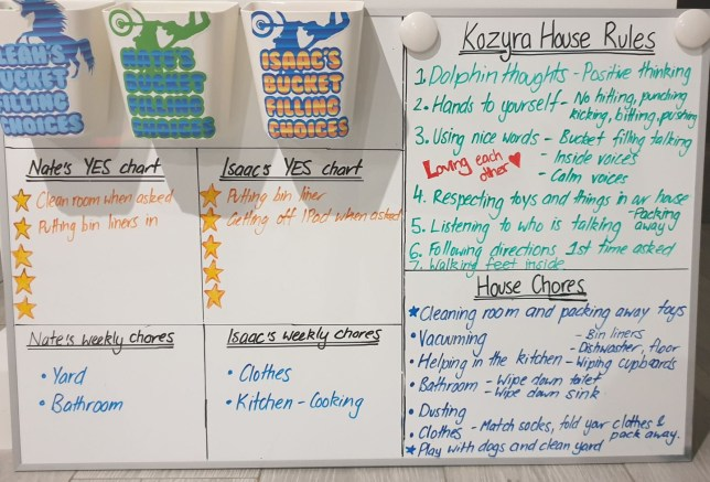 Shelley's reward board showing the buckets at the top, the house rules, chores, and YES chart