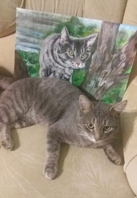 Cat resting next to a painting of itself