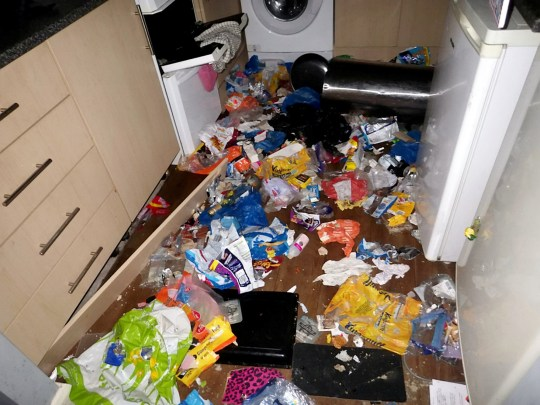The bin where the pets tried to find food. A woman who left the country and went to Malta before she was due to appear in court for leaving her two cats and a dog locked in a property for ten days has been jailed for 18 weeks. See SWNS story SWMDstarved. Tiffany Guest, pleaded guilty to three animal welfare offences when she appeared at Birmingham Magistrates? Court on Tuesday (Oct 15). She was also banned from keeping all animals for 15 years. The court heard how Guest moved out of her flat on May 20, 2017 in Winn Close, Kenilworth, Warwickshire and left her two cats, called Reggie and Ronnie, and her Staffordshire bull terrier-type dog, named Kray, behind. They were discovered ten days later on May 30, 2017 when Warwickshire police were called to the property after neighbours reported a foul smell coming from the flat. Once inside they discovered the emaciated dog and the body of a starved cat and alerted the RSPCA. Inspector Boris Lasserre was sent to the scene and took Kray into RSPCA care for treatment and retrieved the body of a cat called Reggie. He then returned to the flat as reports suggested there were two cats in the property but Reggie could not be found and there was enough evidence to show he had died of starvation and Kray ate the body to survive. Guest was traced to near her work - which was only a mile away from the flat where she abandoned the pets.