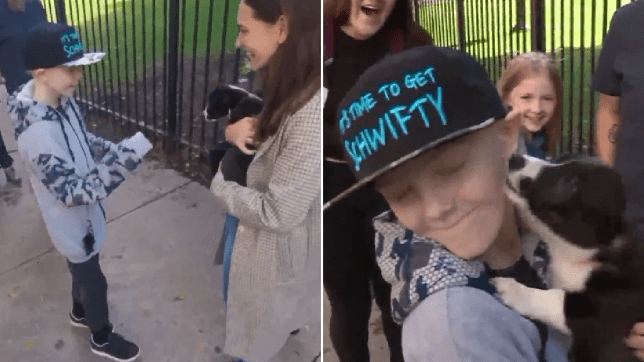 Screengrabs of Johnny Martin getting surprised with his new corgi puppy after beating cancer
