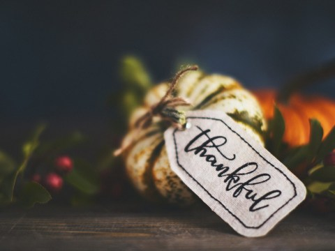 Happy Thanksgiving 2019: Quotes, memes and messages to celebrate