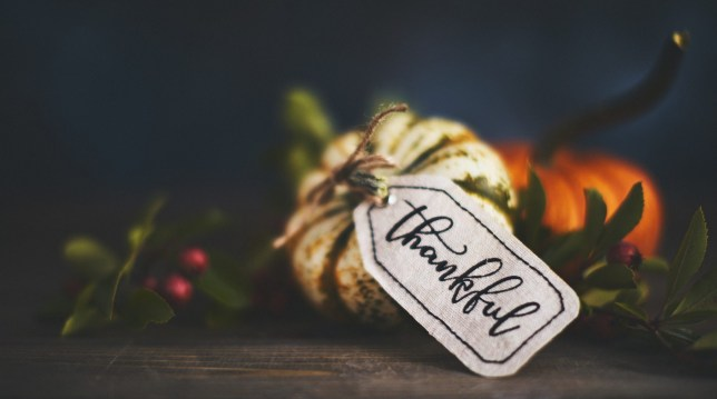 Giving thanks with pumpkin assortment still life and thankful message
