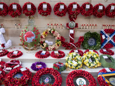What do the different coloured poppies for Remembrance Day mean?