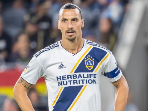 Zlatan Ibrahimovic would be 'dream' signing for Jose Mourinho's Tottenham, says Danny Mills