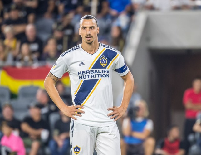 Zlatan Ibrahimovic playing one of his last matches with LA Galaxy ahead of speculation linking him with Jose Mourinho's Tottenham