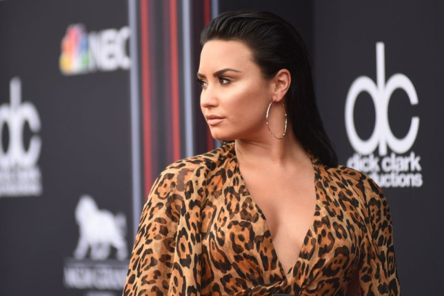 Demi Lovato feels hurt by online trolls