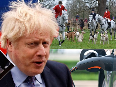 Ten eye-catching Conservative policies that you may have missed