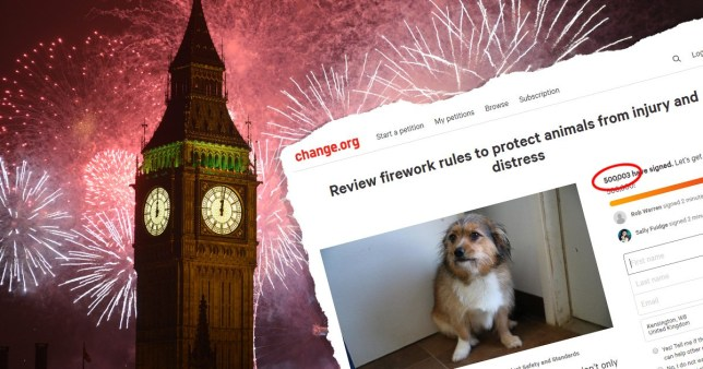 A fireworks petition has hit 500,000