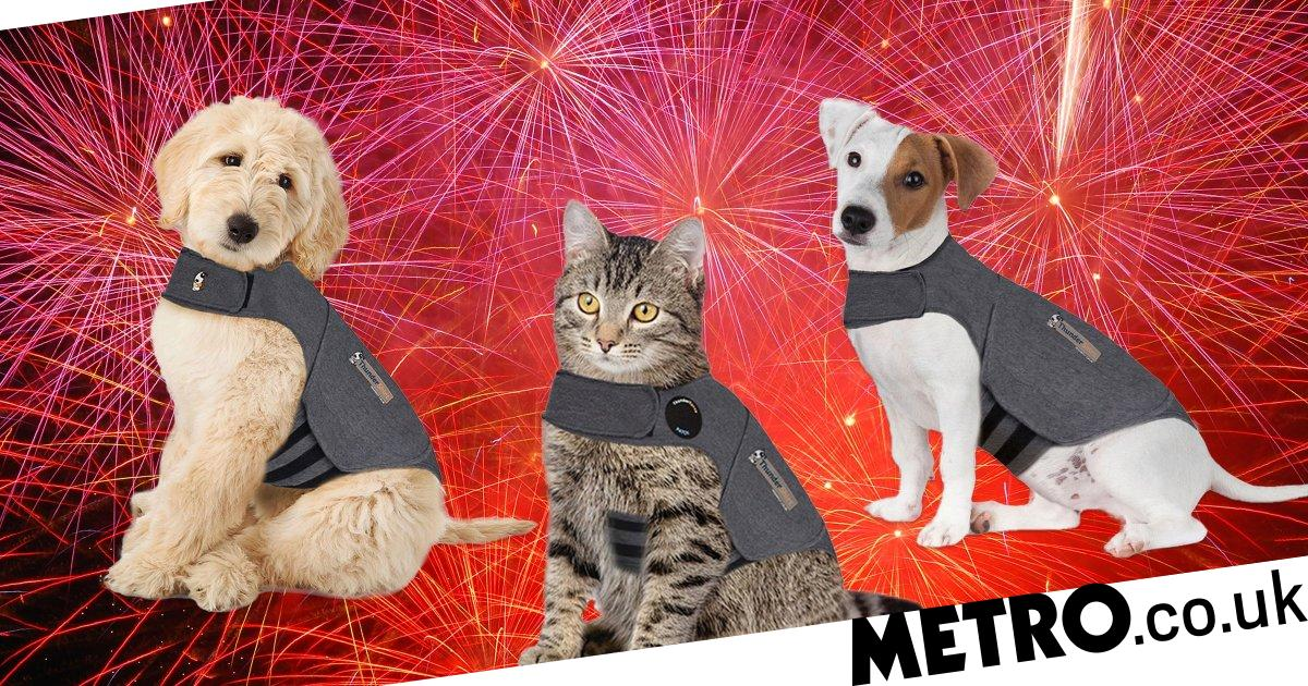 Pets at Home is selling jackets to keep animals calm during fireworks