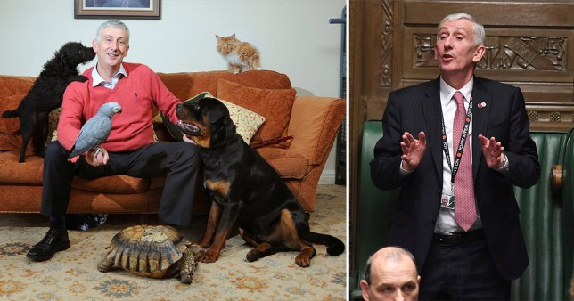 Lindsay Hoyle and his pets