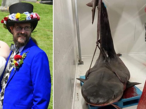 First picture of British civil servant feared to have been killed by shark
