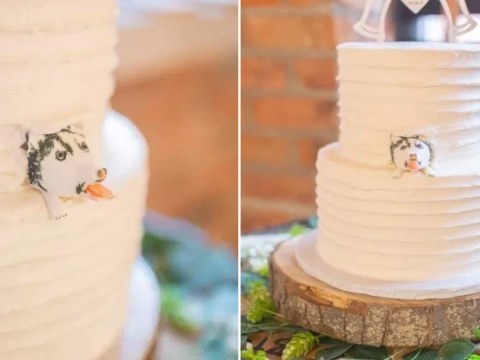 Bride orders dog-themed wedding cake, ends up with one that looks like a 'dead porcupine'