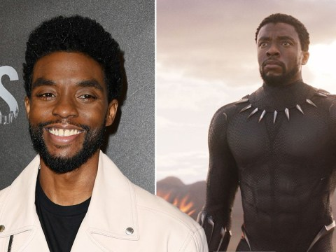 Chadwick Boseman doesn't want Marvel's Black Panther to become a Disney+ TV Show
