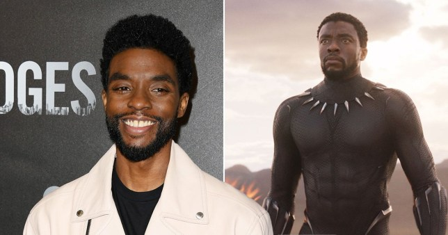 Chadwick Boseman doesn't want Marvel's Black Panther Disney+ Show | Metro  News