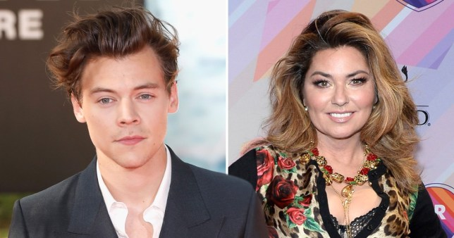 Harry Styles confesses his love of Shania Twain – and now we want a collab