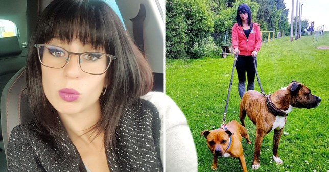 Pregnant woman mauled to death by pack of dogs during deer hunt