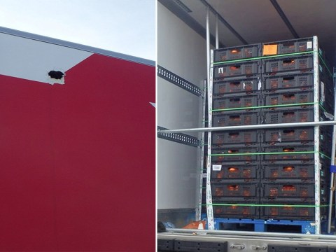 Migrants threw oranges out of refrigerated lorry to attract attention